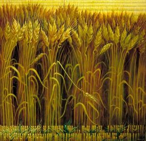 1991.55_1a wheat